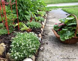 flowers to grow in the vegetable garden