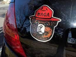Smokey Bear The Maga Hat Window Decal Bumper Sticker Funny Pro Trump Usa Nra 2a Home Garden Decor Decals Stickers Vinyl Art Ayianapatriathlon Com
