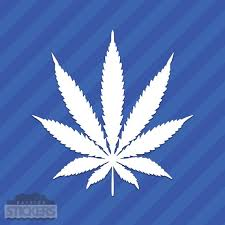 Pot Leaf Cannabis Vinyl Decal Sticker 420 Marijuana Weed Drugs Etsy