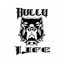 12x15 8cm Creative Car Sticker Bully Life American Bully Mom Bully Dad Vinyl Dog Window Car Decal Black Silver C24 1617 Wish