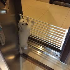 Retractable Dog Gate Indoor Pet Barrier Vingloo