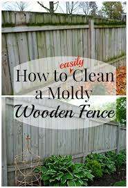 Cleaning A Wood Fence Wooden Fence House Cleaning Tips Cleaning Hacks