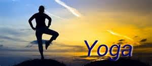 sunrise yoga at fdr state park visit
