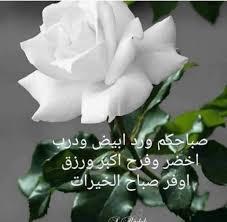 حارة شامية صباح النقاء والصفاء ياسمين الشام فيسبوك
