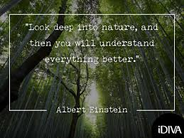 quotes to reconnect you nature health