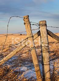 Barb Wire Fence Post Stock Photos Freeimages Com