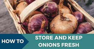 how to onions and keep them fresh