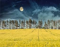 Fasi lunari: la luna di oggi e calendario lunare 2020
