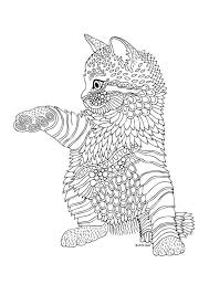 Kittens And Butterflies Coloring Book By Katerina Svozilova
