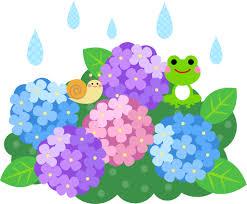 梅雨-スタッフブログ|スズキトラストオフィシャルサイト