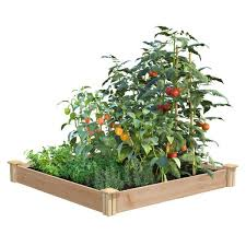 Greenes Fence 4 Ft X 4 Ft X 5 5 In Premium Cedar Raised Garden Bed Rc4s4b The Home Depot