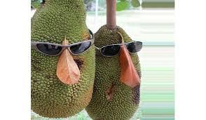 jackfruit nutrition facts health
