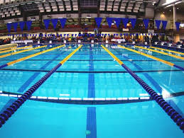 Swimmers set for preliminary races in IHSAA state finals   USA TODAY High  School Sports