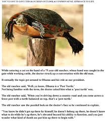 The Post Turtle Patriactionary