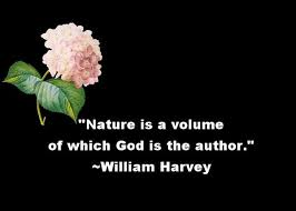 nature quotes nature is a volume of which god is the author