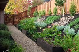 backyard garden box ideas photograph