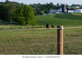 High Tensile Fence Images Stock Photos Vectors Shutterstock