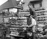 The Kalinich Fence Company Family History As Manufacturers Of Snow Fence