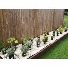 Garden On A Roll Professionally Designed Garden Borders