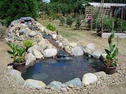 patio pond outdoor fish ponds
