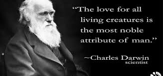 charles darwin the lower animals like man feel pleasure and