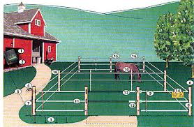 Large Animal Fencing Supplies For Cattle And Other Large Animals