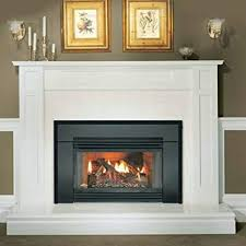 gas fireplace insert arched cast iron