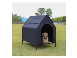 Dog House Beautiful Durable Options That Are Great For Your Pet Most Searched Products Times Of India