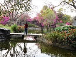 buddha jayanti park new delhi 2020