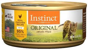 best cat food for gy cats