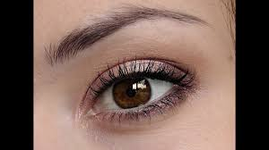 make up for dark brown eyes you