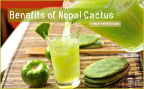 top 11 health benefits of nopal cactus