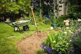 preparing your soil for planting rose