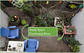 small space gardening 20 clever ideas
