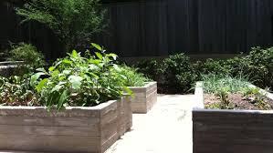 Van Ryzin: Landscape architect Alisa West weighs sustainability, use - News  - Austin American-Statesman - Austin, TX