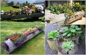 exciting house garden decoration ideas