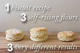 which flour made the best biscuits