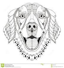 Golden Retriever Dog Zentangle Stylized Head Freehand Pencil H