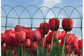 China Border Fence Roll Flower Wire Mesh China Panacea Flower Border Fence Garden Fence