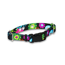 Replacement Containment And Training Collar Strap For Most Dog Fence Brands By Extreme Dog Fencetm Small 10 12 X 3 4 Flower Days Walmart Com Walmart Com