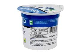 epigamia greek yogurt blueberry tub 90