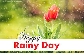 40 best rainy day wish pictures and photos