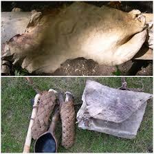 make buckskin from a deer hide