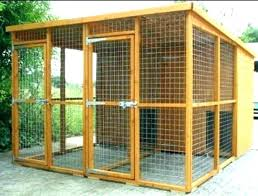 cat runs for outside cage cureskin info