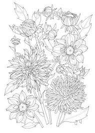 Kleuren Voor Volwassenen Bloemen Alfabet Kleurplaat D Van