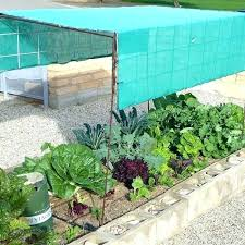 sun shade for vegetable garden