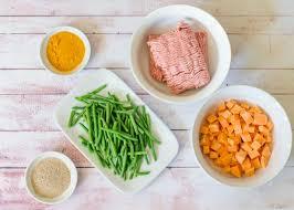 how to make homemade dog food diy