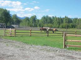 10 Cedar Split 3 Rail Fence Section Material List At Menards