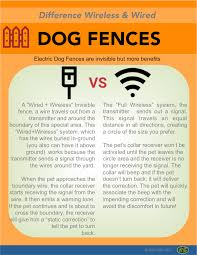 2019 Best Invisible Dog Fence Reviews Dog Fence Wireless Dog Fence Pet Fence