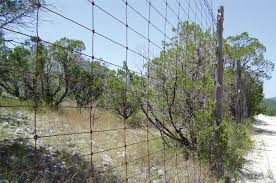 Don T Let Fence Wire Tie You Down You Have Choices Progressive Cattle